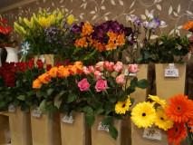 rezane-kytky