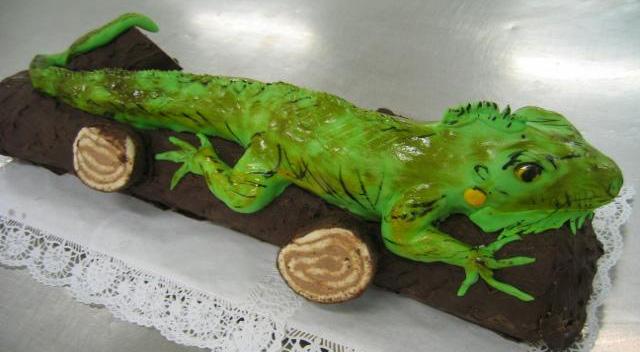 Dort speciální - chameleon