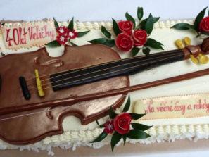 Dort speciální - housle