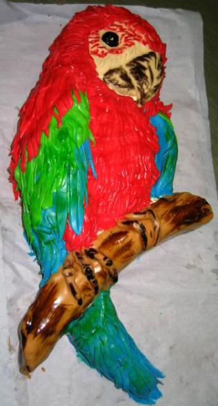 Dort speciální - papoušek