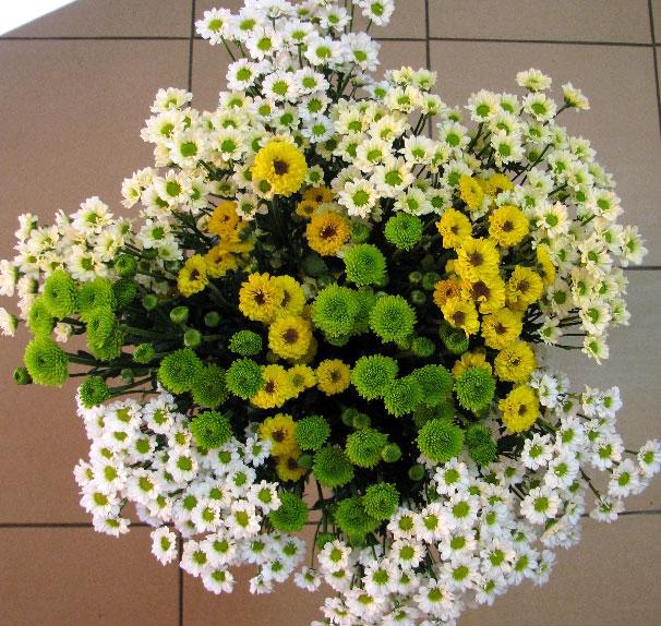 KY-037 Příležitostní kytice